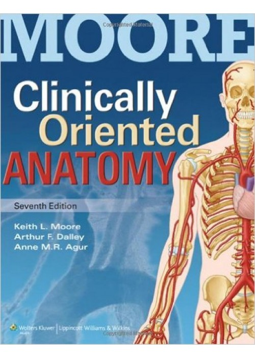Clinically Oriented Anatomy 7/e